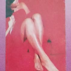 CCO 1975 - CALENDAR DE COLECTIE - TEMATICA RECLAMA - ADESGO - ANUL 1975