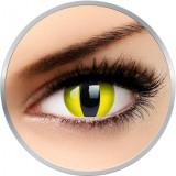 Fancy Yellow Cat - lentile de contact colorate Crazy galbene anuale - 360 purtari (2 lentile/cutie)
