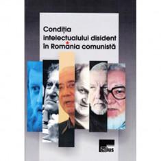 Condiţia intelectualului disident în România comunistă
