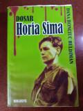 DOSAR HORIA SIMA - DANA HONCIUC BELDIMAN
