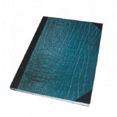 Registru coperti carton A4 dictando 100 file