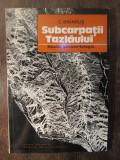 SUBCARPATII TAZLAULUI-C.BRANDUS