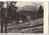 CPIB 15772 CARTE POSTALA - PREDEAL. VEDERE SPRE BUCEGI, RPR