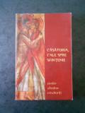 DAVID & MARY FORD - CASATORIA, CALE SPRE SFINTENIE