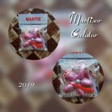 """Martisor Natural """"Model 107"""""""