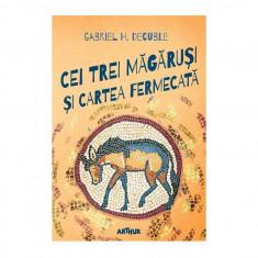 Cei trei magarusi si cartea fermecata   Gabriel H. Decuble