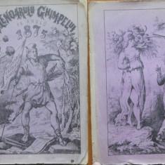 Calendarul Ghimpelui pe anul 1875 , 1874 , cu 24 gravuri