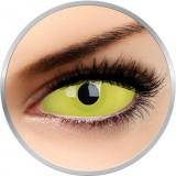 Glow Amazo - lentile de contact colorate galbene anuale - 360 purtari (2 lentile/cutie)