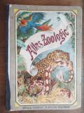 ATLAS ZOOLOGIC, 1916 / 24 PLANSE LITOGRAFIATE