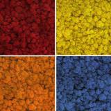 Licheni conservati ARTFLORA Mix Basic Box 500gr