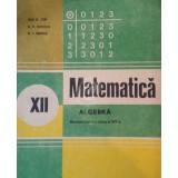 Matematica. Algebra. Manual pentru clasa a XII-a (1992)