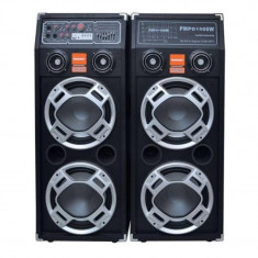 Boxe active DP-2304, 360 W, intrare chitara