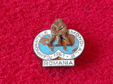 Insigna Sportiva - Campionatele Mondiale de Lupte 1967 ROMANIA