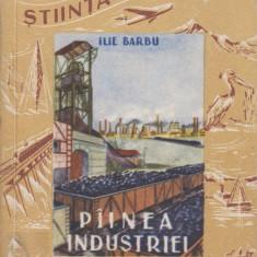 Painea industriei
