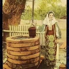 La Fantana. Salutari din Romania - Cp Ilustrata, Litografie