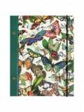 Carnet - Butterflies | Portico Designs