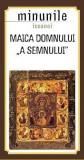 Minunile icoanei Maica Domnului a Semnului |, Sophia