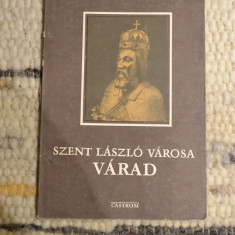 Monografie al orasului Oradea