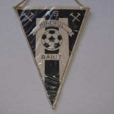"Fanion fotbal - AS ""MINERUL"" BAIUT"