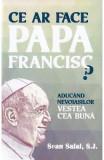 Ce ar face Papa Francisc? - Sean Salai, S.J.