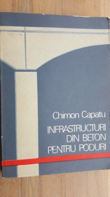 Infrastructuri din beton pentru poduri- Chimon Capatu foto