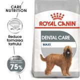Cumpara ieftin Royal Canin Maxi Dental Care, 3 kg