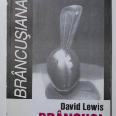 """David Lewis - Brâncuși (colecția """"Brâncușiana"""")"""