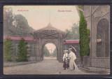 SALUTARI DIN BUZIAS  BUZIAS - FURDO  CIRCULATA  1913