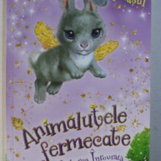 ANIMALUTELE FERMECATE DIN PADUREA INROURATA - BELLA IEPURASUL de LILY SMALL , 2018