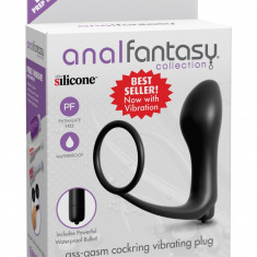 Dop anal cu inel erectie - Anal Fantasy Collection
