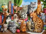 Puzzle Castorland 2000 Interlitho: House of cats