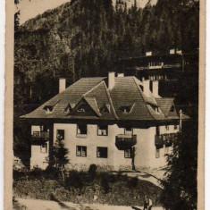 LACUL ROSU CAMINUL CCS RPR LIBRARIA NOASTRA 1956