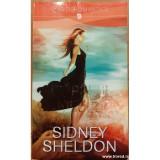Stapanul jocului, Sidney Sheldon