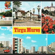 TARGU MURES – COLAJ CU VEDERI DIN ORAS - CP NECIRCULATA #colectosfera, Fotografie
