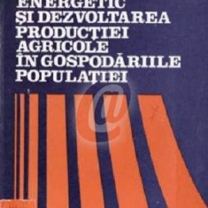 Consumul energetic si dezvoltarea productiei agricole in gospodariile populatiei