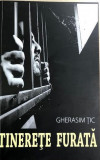 Tinerete furata Gherasim Tic, Alta editura, 2017