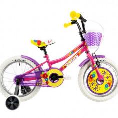 Bicicleta Copii DHS 1402 Roz 14