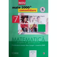 Matematica - Algebra, Geometrie clasa a VII-a, partea II