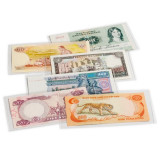 Posete transparente pentru bancnote 210 x 127 mm