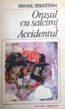 Orasul cu salcami. Accidentul (1985)