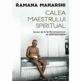 Cumpara ieftin Calea Maestrului Spiritual. Scrisori de la Sri Ramanasramam (II)/Suri Nagamma
