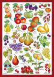 Puzzle Schmidt - 1000 de piese - COUNTRYSIDE ART: FRUITS
