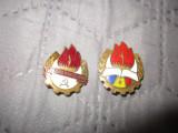 2 insigne pionieri diferite c19