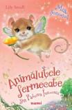 Mia, soricelul. Seria Animalutele fermecate din Padurea Inrourata - Lily Small