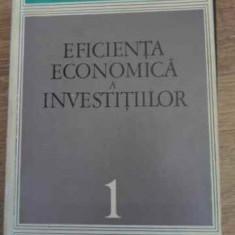EFICIENTA ECONOMICA A INVESTITIILOR CERCETARI TEORETICE-METODOLOGICE - COLECTIV