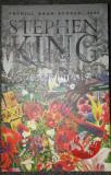 Stephen King - Povestea lui Lisey