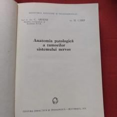C. ARSENI - ANATOMIA PATOLOGICA A TUMORILOR SISTEMULUI NERVOS
