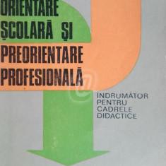 Orientare scolara si preorientare profesionala. Indrumator pentru cadrele didactice