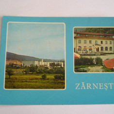 RC - ZARNESTI 1