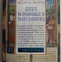 Iisus in evanghelii si texte gnostice - Marvin Meyer